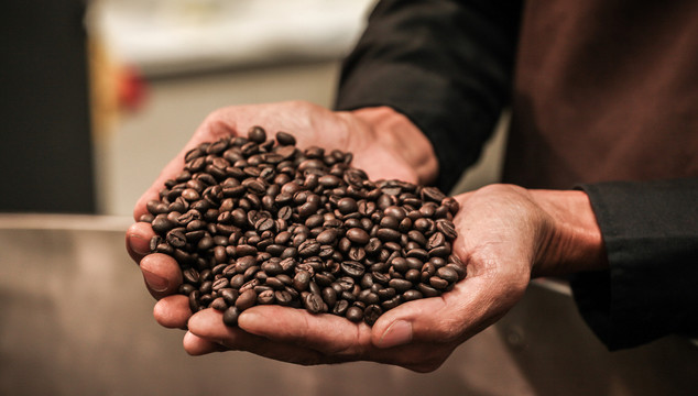 Roasted coffee beans in hands